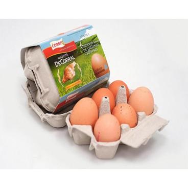 Huevos de corral de gallinas camperas