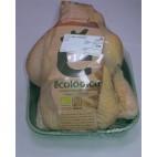 Pollo ecologico